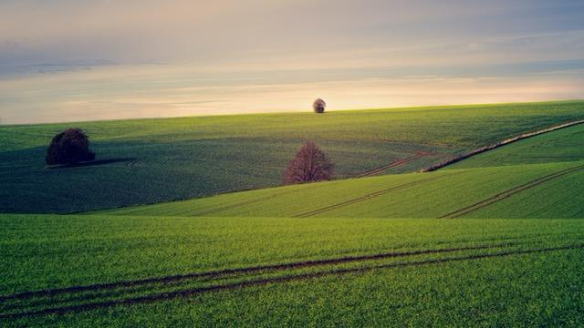 Zachowek a darowizna gospodarstwa rolnego